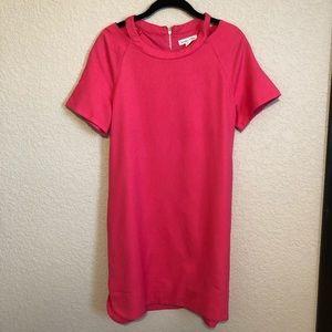 Love Riche Pink Dress